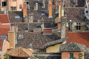 Rooftops of Old Lyon  David Steel